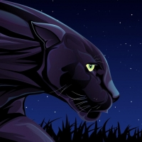 Night Prowler Esports (Gold & Silver)